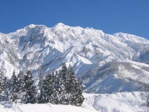 八海山 冬